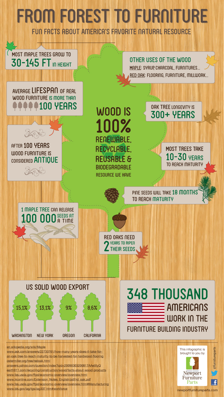 Facts about wood